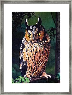 Hoot Owl Framed Print