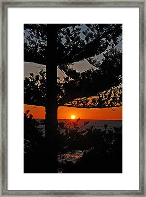 Framed Print featuring the photograph Hope by Ankya Klay