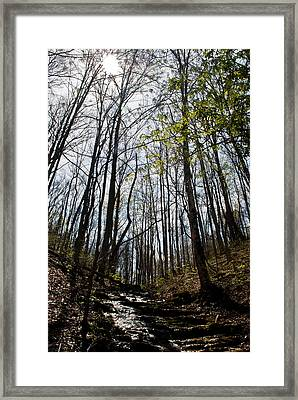 Hope In A  Mountain Stream Framed Print