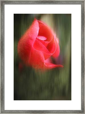 Hope Shines Through Framed Print by Michael Eingle