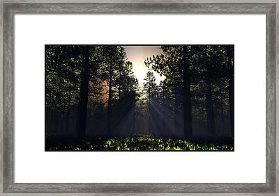 Hope Springs Eternal... Framed Print