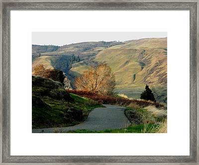 Hope Springs Framed Print