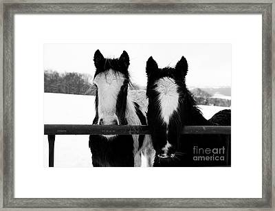 Hopeful Framed Print by Anne Gilbert