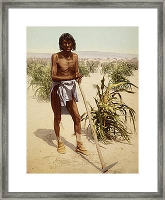 Hopi Man With A Hoe Framed Print by William Henry Jackson
