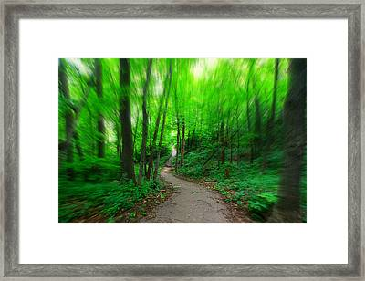 Hopkins Path Framed Print by Amanda Stadther