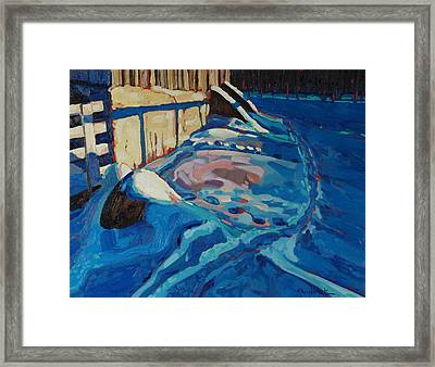 Hopping Down The Bunny Highway Framed Print by Phil Chadwick