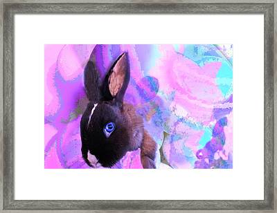 Hoppy Easter Framed Print