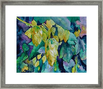 Hops Framed Print by Beverley Harper Tinsley