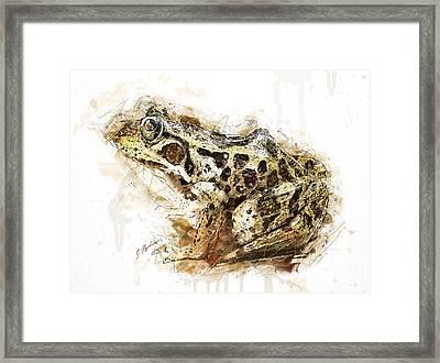 Hopscotch Framed Print by Gary Bodnar