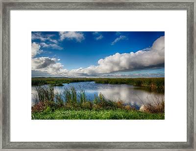 Horicon Marsh Wisconsin Framed Print