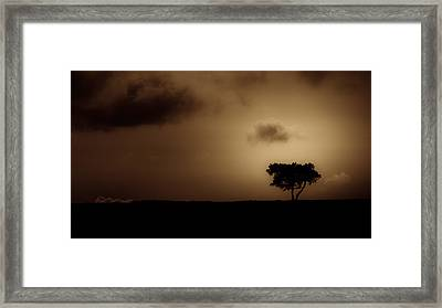 Horizon Highlight Framed Print