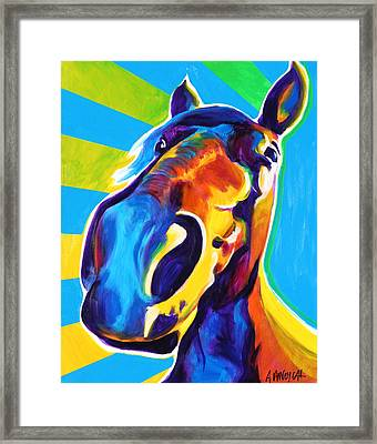 Horse - Chipper Framed Print