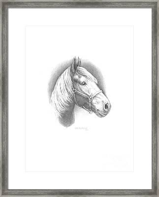 Horse-1 Framed Print by Lee Updike