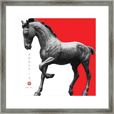 Horse 3 Framed Print by David Davies