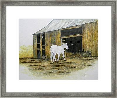 Horse And Barn Framed Print by Bertie Edwards