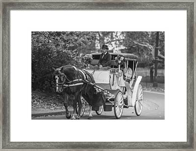 Horse And Buggy Central Park  Framed Print by John McGraw