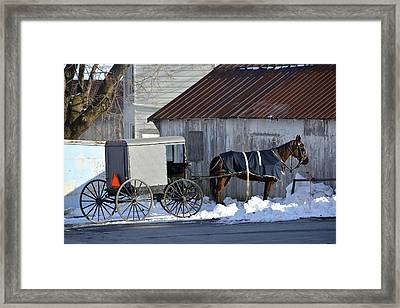 Horse And Buggy Parked Framed Print