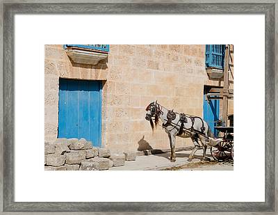 Horse And Carriage - Time Out. Framed Print