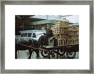 Horse And Cart London 1973 Framed Print by David Davies