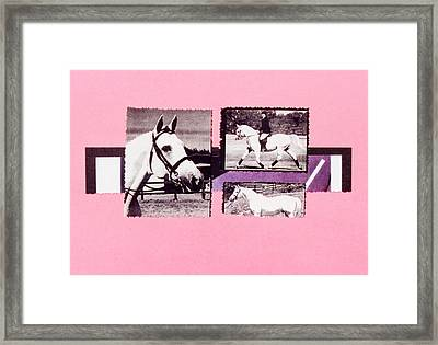 Horse And Rider C Framed Print by Mary Ann  Leitch