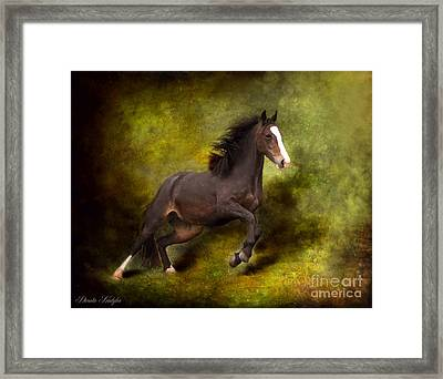 Horse Angel Framed Print