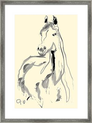 Framed Print featuring the painting Horse - Arab by Go Van Kampen