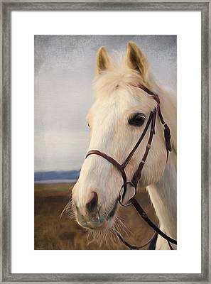 Horse Art - Beauty Is A Light Framed Print by Jordan Blackstone