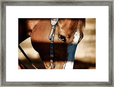 Framed Print featuring the photograph Horse At Work by Pamela Blizzard