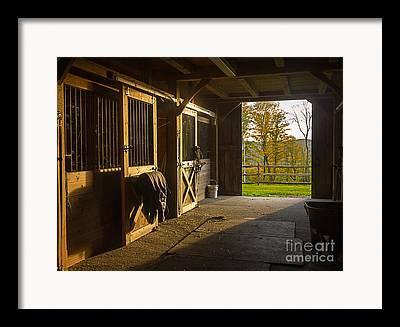 Stable Photographs Framed Prints