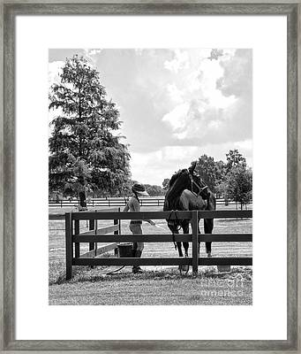 Horse Bathing At City Park In Black And White Framed Print
