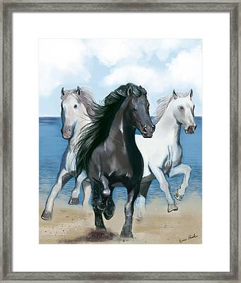 Horse Beach Framed Print by Eric Smith