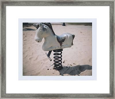 Horse Framed Print by Brady D Hebert