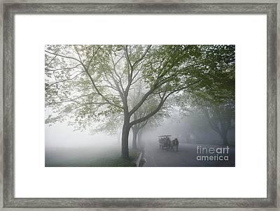 Horse Carriage Framed Print by James L. Amos
