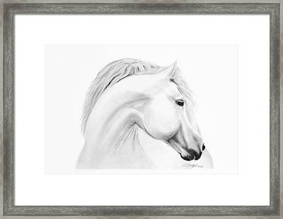 Horse Framed Print by Don Medina