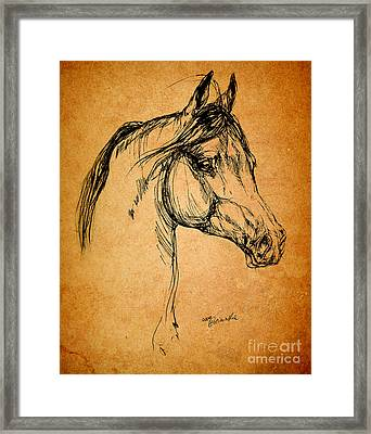 Horse Drawing Framed Print by Angel  Tarantella