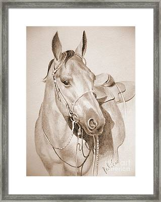 Horse Drawing Framed Print