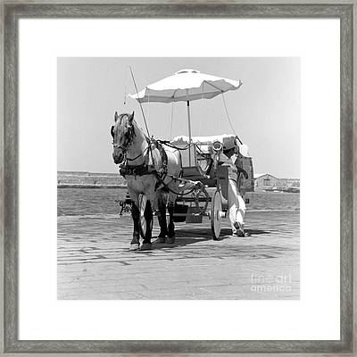 Horse Drawn Carriage In Crete Framed Print