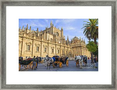 Horse Drawn Carriages In Seville Framed Print by Patricia Hofmeester
