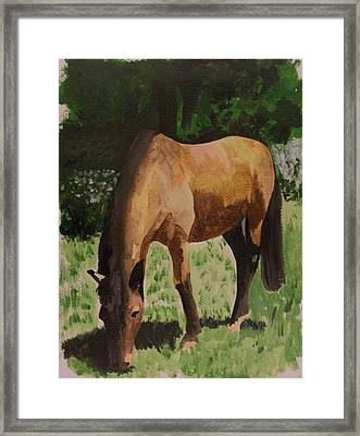 Horse Framed Print by Isabella F Abbie Shores FRSA