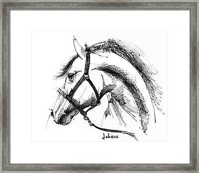 Horse Face Ink Sketch Drawing Framed Print by Daliana Pacuraru