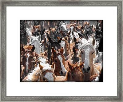 Horse Faces Framed Print