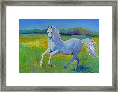 Horse Fancy Framed Print by Gwen Carroll