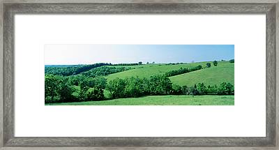 Horse Farm, Kentucky, Usa Framed Print