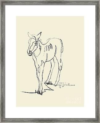 Horse- Foal -josje Framed Print by Go Van Kampen