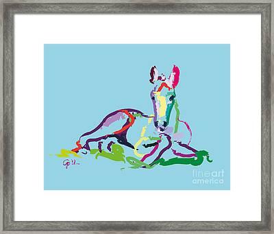 Horse - Foal - Sweetie Framed Print by Go Van Kampen
