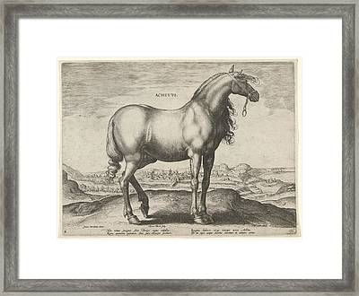 Horse From Greece Achivus, Hieronymus Wierix Framed Print by Hieronymus Wierix And Philips Galle