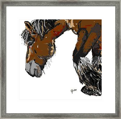 Framed Print featuring the painting horse - Guus by Go Van Kampen