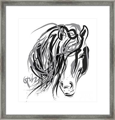 Horse- Hair And Horse Framed Print by Go Van Kampen