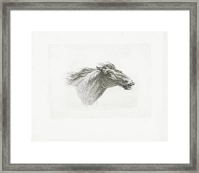 Horse Head, Joannes Bemme, Gerrit Malleyn Framed Print