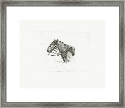Horse Head, Left, Joannes Bemme Framed Print